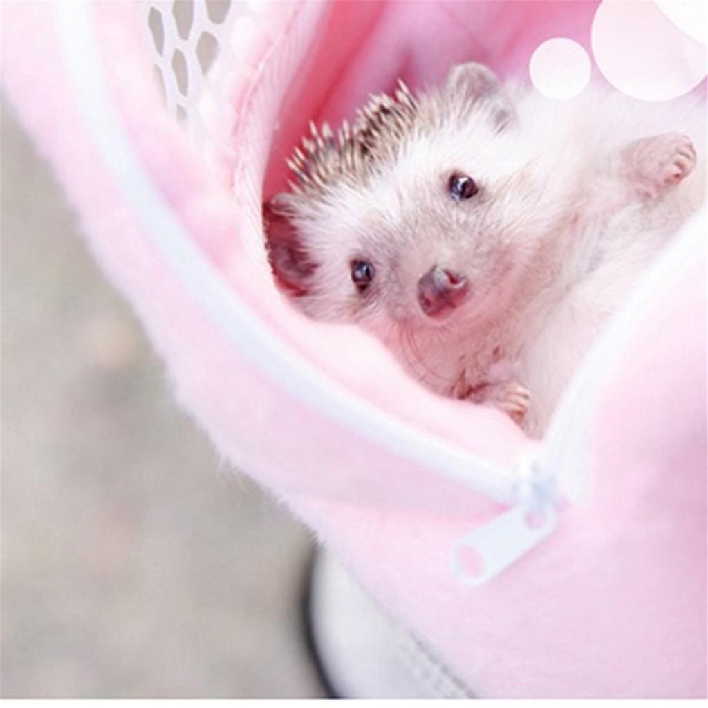 USA Travel Rat Hamster Hedgehog Bag Chinchilla Ferret Carrier Pet Hanging Pouch