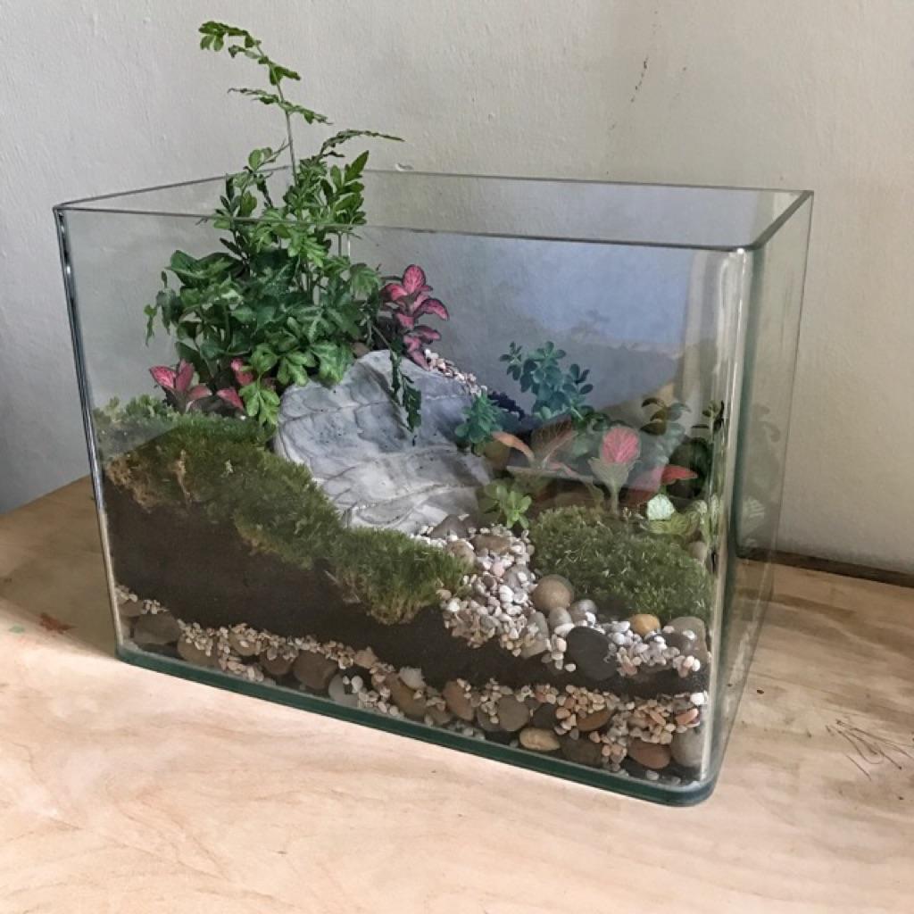 Terrarium Fish Tank Shopee Singapore