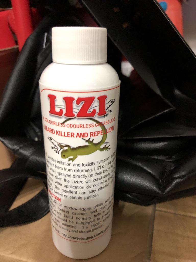 Lizi lizard repellent and killer | Shopee Singapore