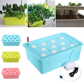 Holes Plant Site Hydroponic System Grow Kit Bubble Indoor Garden Cabinet Box