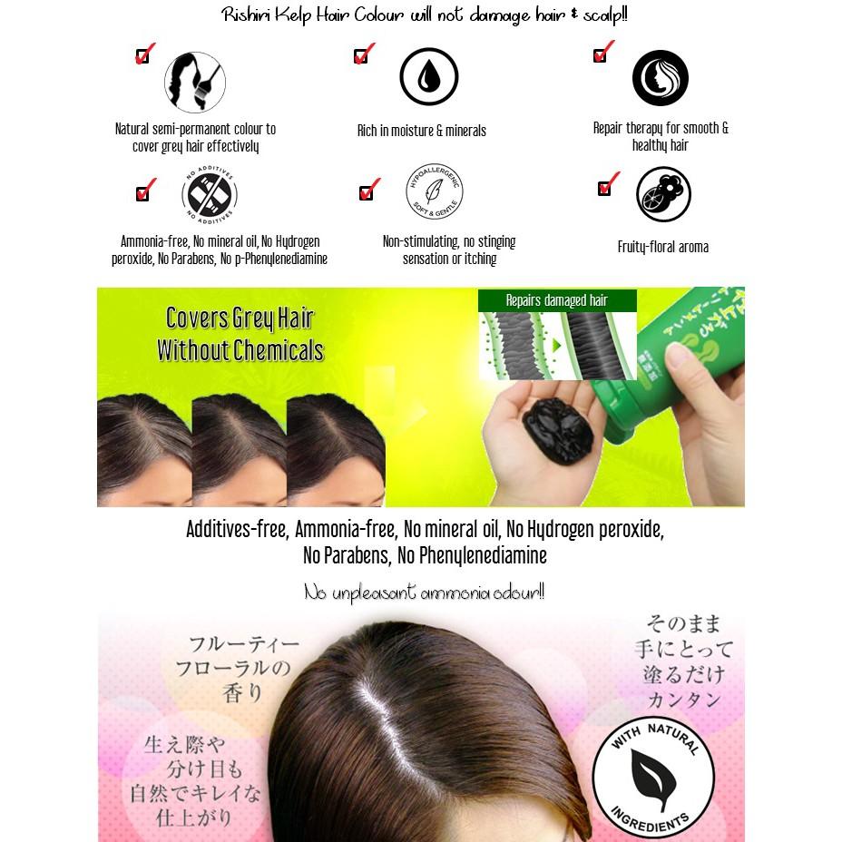 Japan Rishiri Natural Kelp Hair Dye Colour Treatment 200g