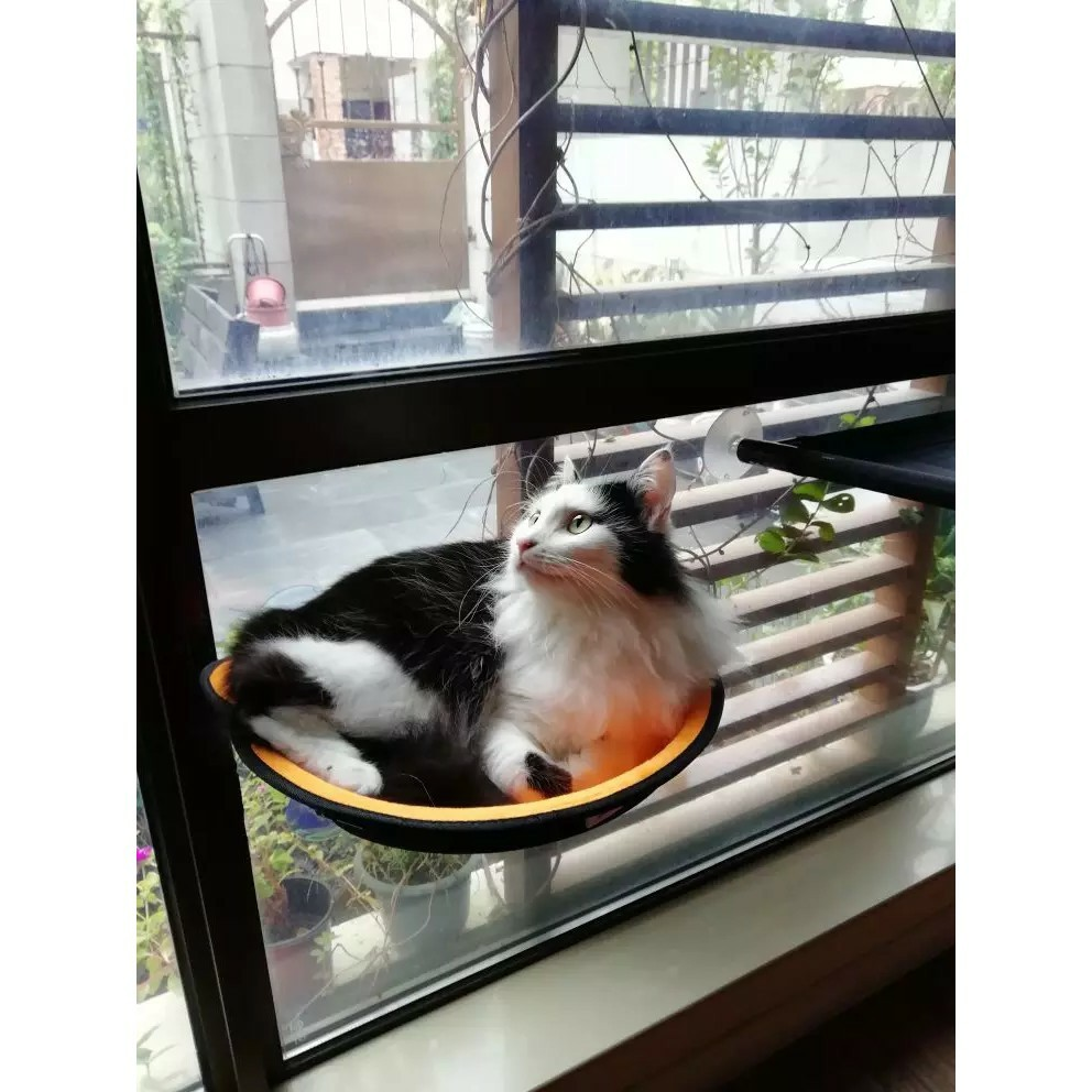 Prime Cat Dog Hammock Dog Cat Window Bed Lounger Sofa Hanging Seat Andrewgaddart Wooden Chair Designs For Living Room Andrewgaddartcom