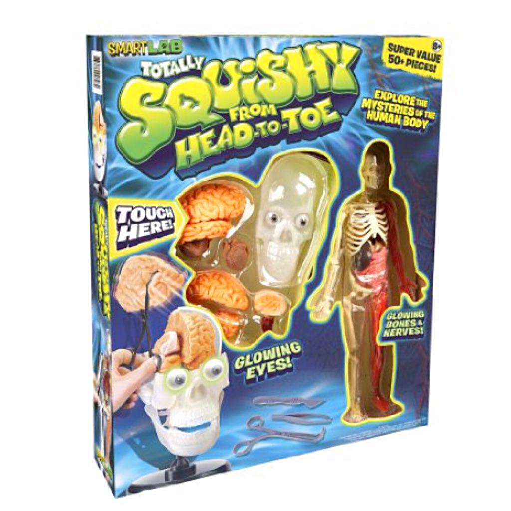 Human body toy educational squishy | Shopee Singapore