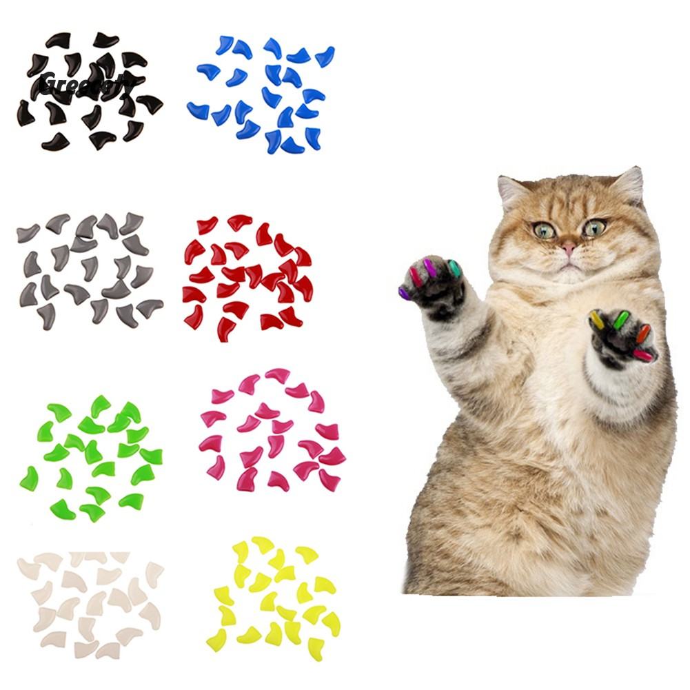 Plastic Colorful Cat Nail Caps Paw Claw