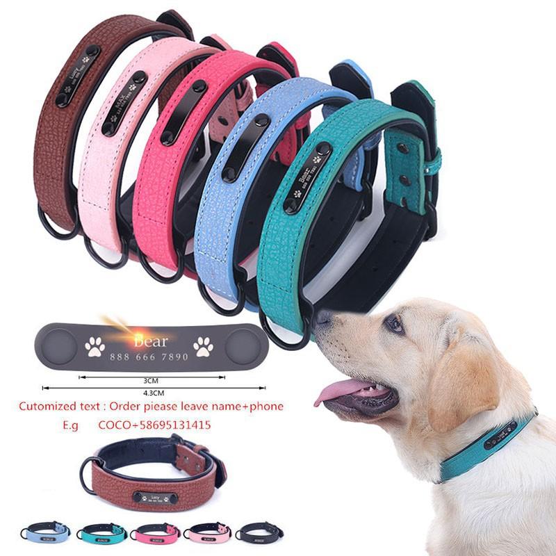 Custom Dog Collars and Leashes Large Dog Collar Dog Collar with Name