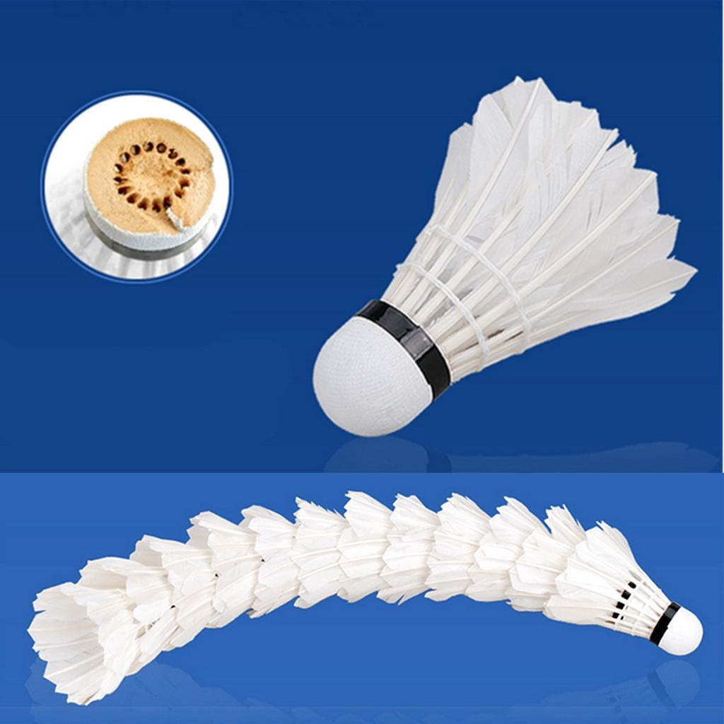 Radient 5pcs Game Sport Training White Duck Feather Shuttlecock Birdies Badminton Ballsh Badminton