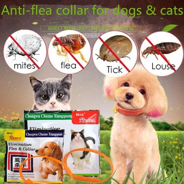 1PC Pet Dog Cat Anti Flea Collar Tick Quick Kill Pet Necklace Flea Killer