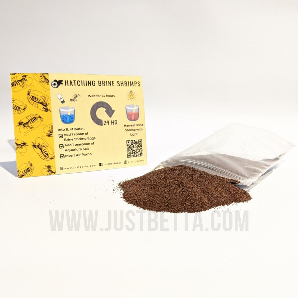 Bbs Eggs 95 Hatch Rate Of Baby Brine Shrimp Artemia Sea Monkey For Small Baby Fish Shopee Singapore