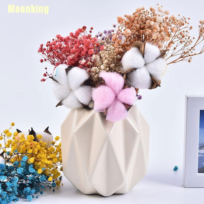 Moonking New Flower Small Natural Dried Flowers Bouquet Dry Flowers Press Mini Decorative Shopee Singapore
