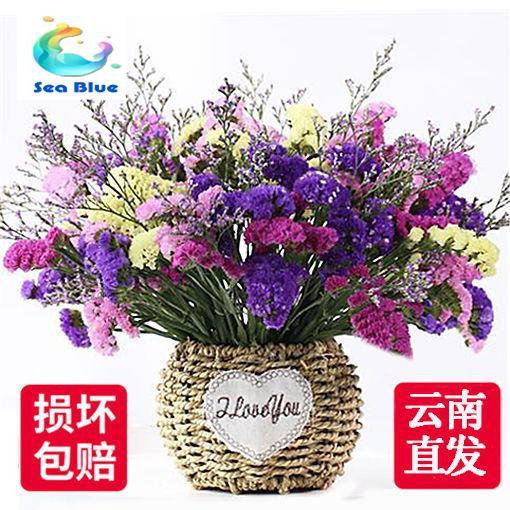 Sea Blue Yunnan Dried Flowers Bouquets Gypsophila Flowers Flower Arrangements Home Furnishings Small Fresh Living Room Decorations Shopee Singapore