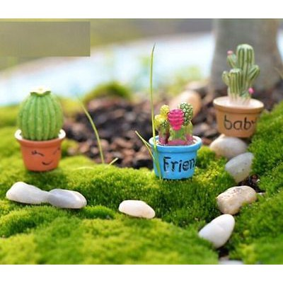 5pcs Carrot or Pineapple Potted Decorations Micro Landscape Accessories