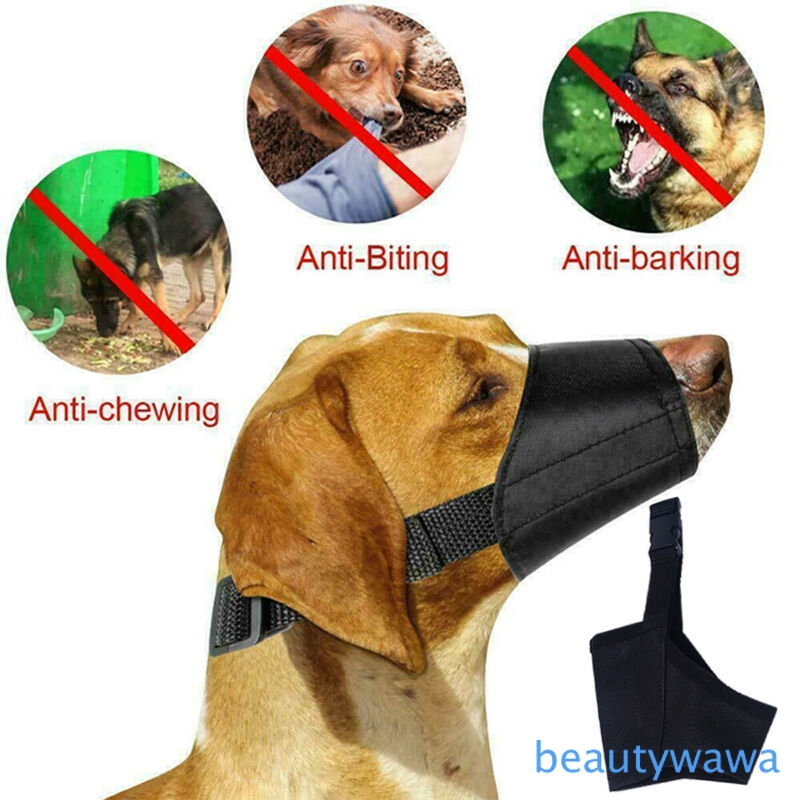 Adjule Biting Barking Chewing