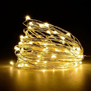 competitive price 9781b 19c88 1M 10LED/2M 20LED Copper Wire Xmas String Fairy Light Lamp Button Battery  Lights