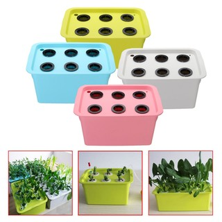 6 Holes Plant Site Hydroponic System Grow Kit Bubble Indoor Garden Cabinet#C#LH