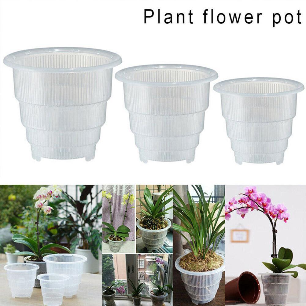 Clear Orchid Pot Plastic Flower Planter