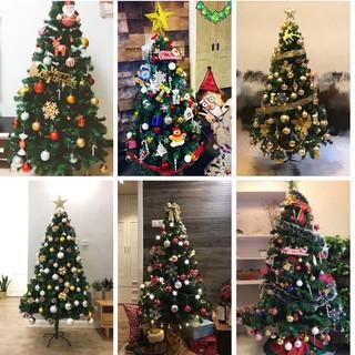 Christmas trees Shopee