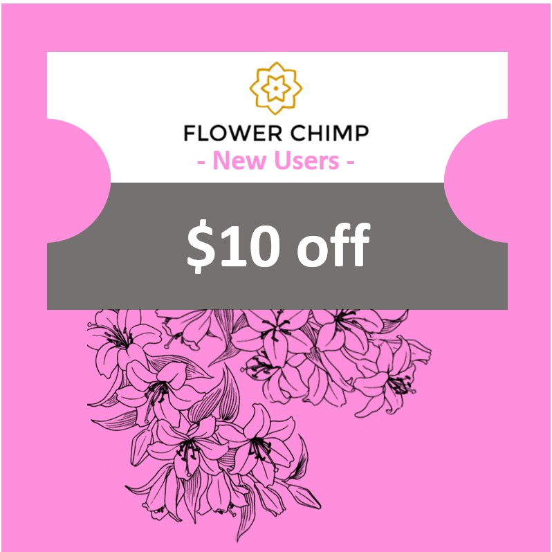 Flower Chimp SGD10 OFF - Instant Delivery