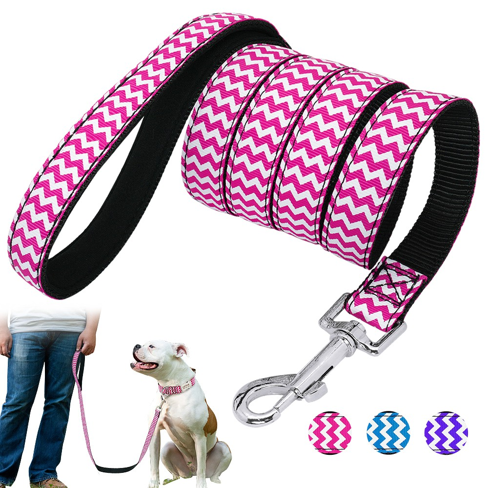 Paw Print Nylon Puppy Dog Collar /& Matching Leash Set for Small Medium Dogs