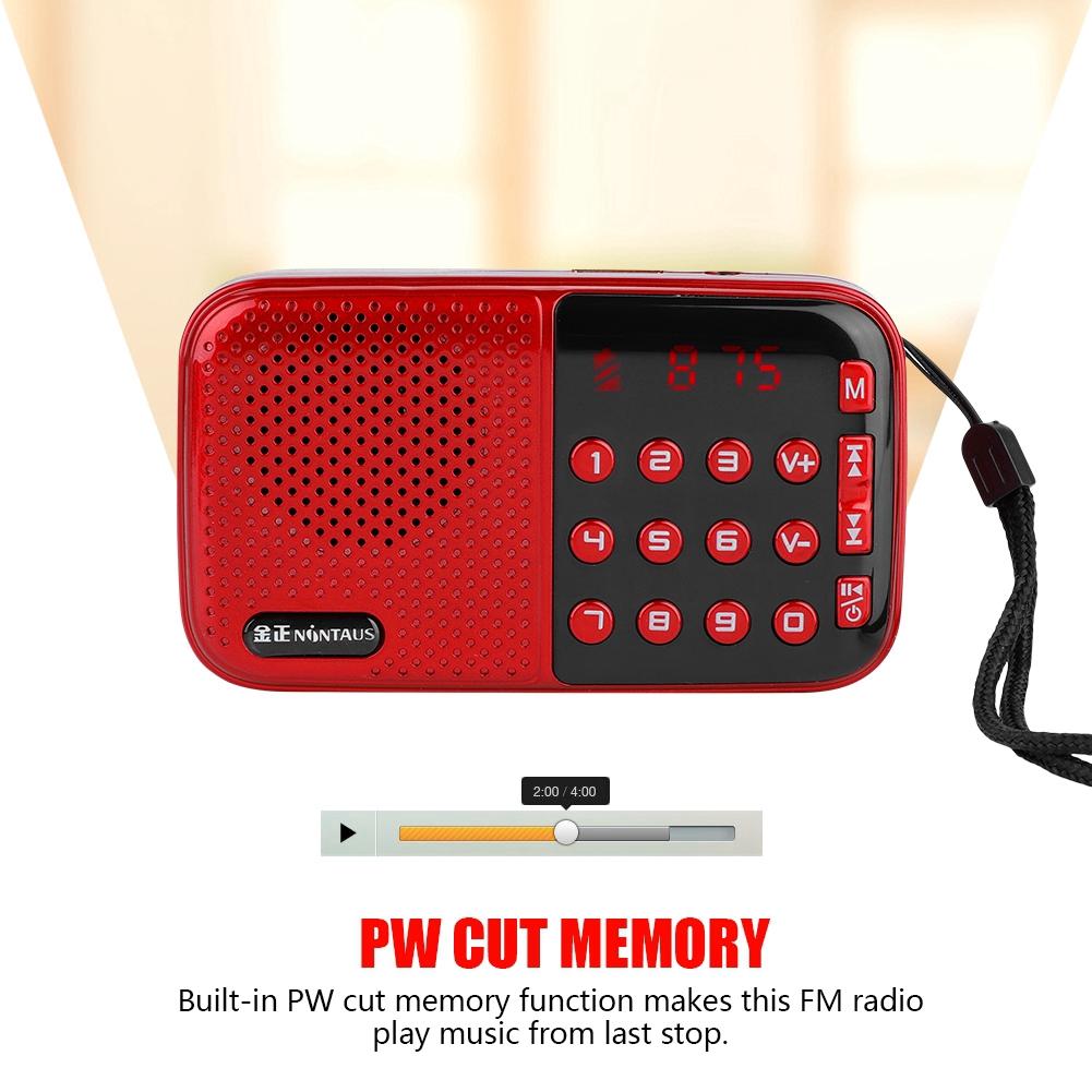 FM 24-hour PW Disk/TF Standby Memory Speaker Radio USB Music with Radio Cut  FM