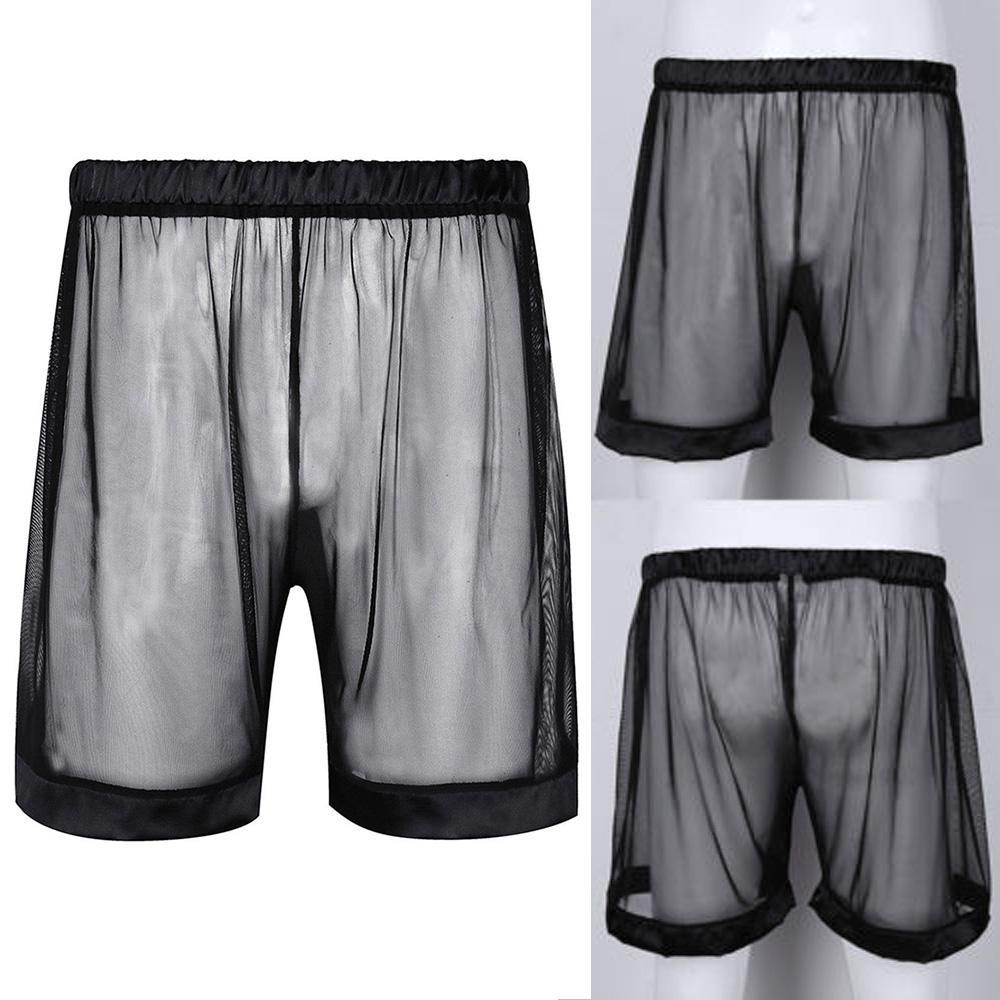Men Transparent Mesh Sheer See Through Boxer Briefs Shorts Pants Trunk Underwear